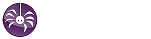 CyberSpyder Marketing Services | Fort Smith, Arkansas